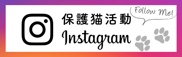 保護猫活動Instagram